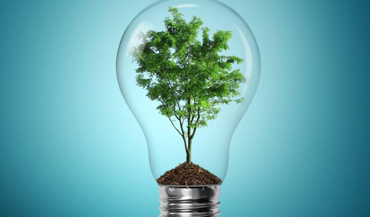 Resultado de imagen para emprendedores sustentables